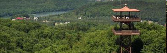 Wieża Widokowa w Wieżycy